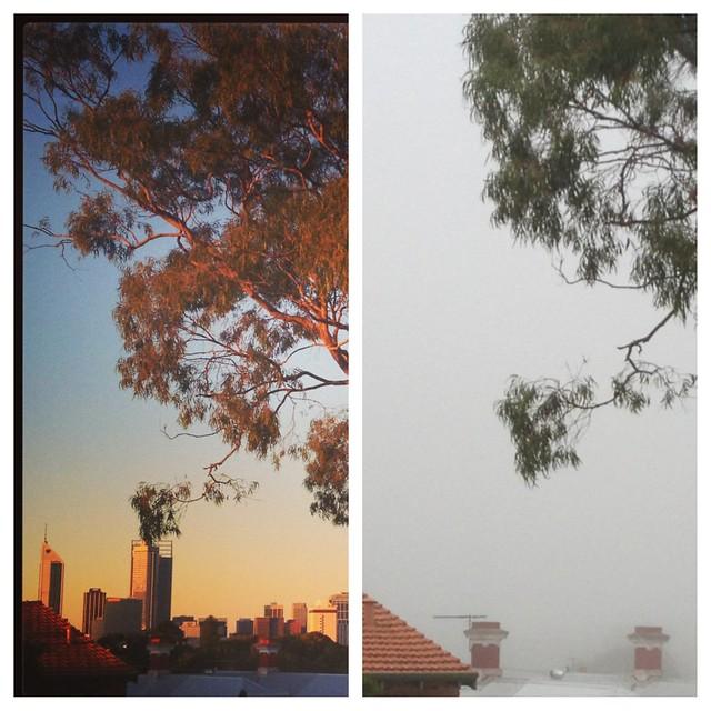 fog04