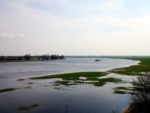 Elbe bei Polte