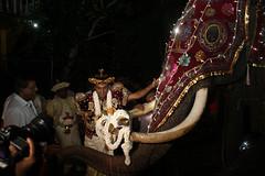 wasana-etha-elephant-kataragama-mahinda-pathegama-karanduwa-siththamgallena