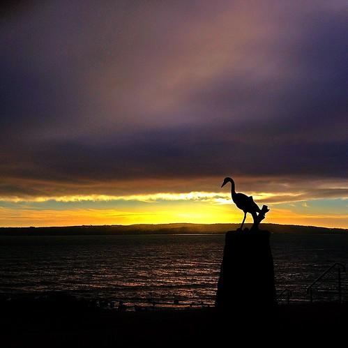 sunset sea silhouette sunrise belfast northernireland iphone loughshorepark mobilephotography phoneography loughshore iphoneography iphoneonly