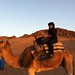 Eden on a camel by ISBerne Online