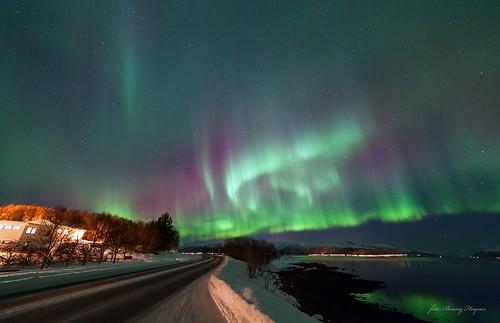 Powerful auroras, over jektbogen, Sortland, Norway. 2013
