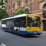 Brisbane Transport 554