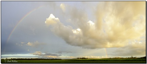 Rainbow Over Canefields