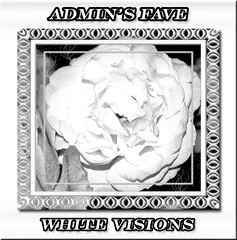 ADMINS FAVE WHITE VISIONS
