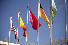 Flags flying outside of Brandeis IBS