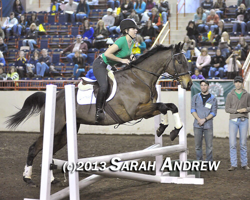 Suave Jazz and Katie Klenk at the PA Horse World Expo