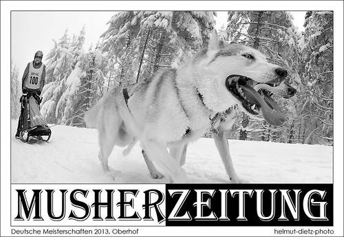 DM 2013 Schlittenhunderennen, Oberhof - helmut-dietz-photo: Hans-Jürgen-Ebert