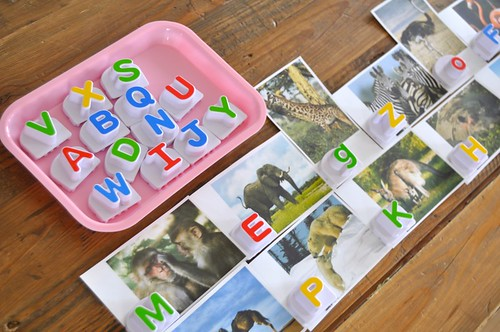 Zoo Cards and Alphabet Letters