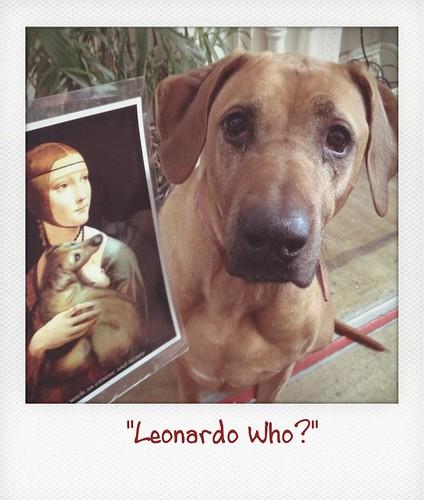Henry_Leonardo_who