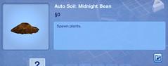 Midnight Bean