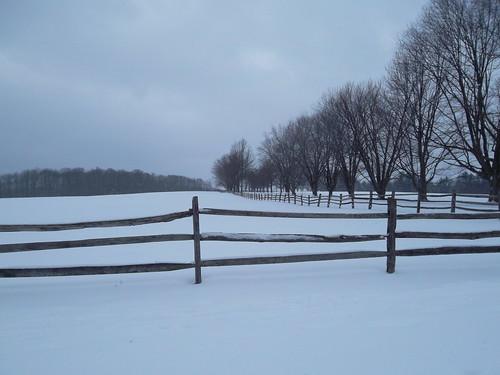 Knox Farm II