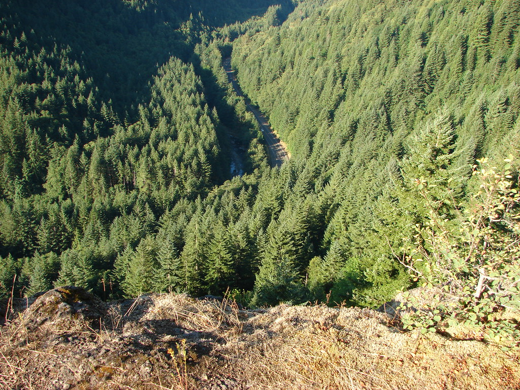Looking down from the Elk Mountian Trail