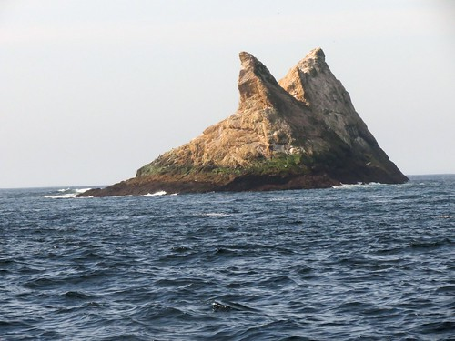 The SEAL rocks - Fókakomák