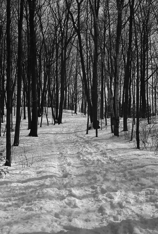 400TX:365 - Week 10 - Rattlesnake Point