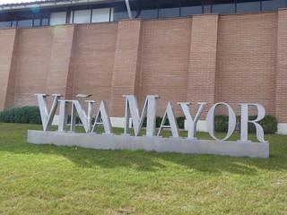 Foto de Viña Mayor (Valladolid)