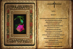 Evangelio según San Juan 13,1-15.  Jueves 28 Marzo 2013
