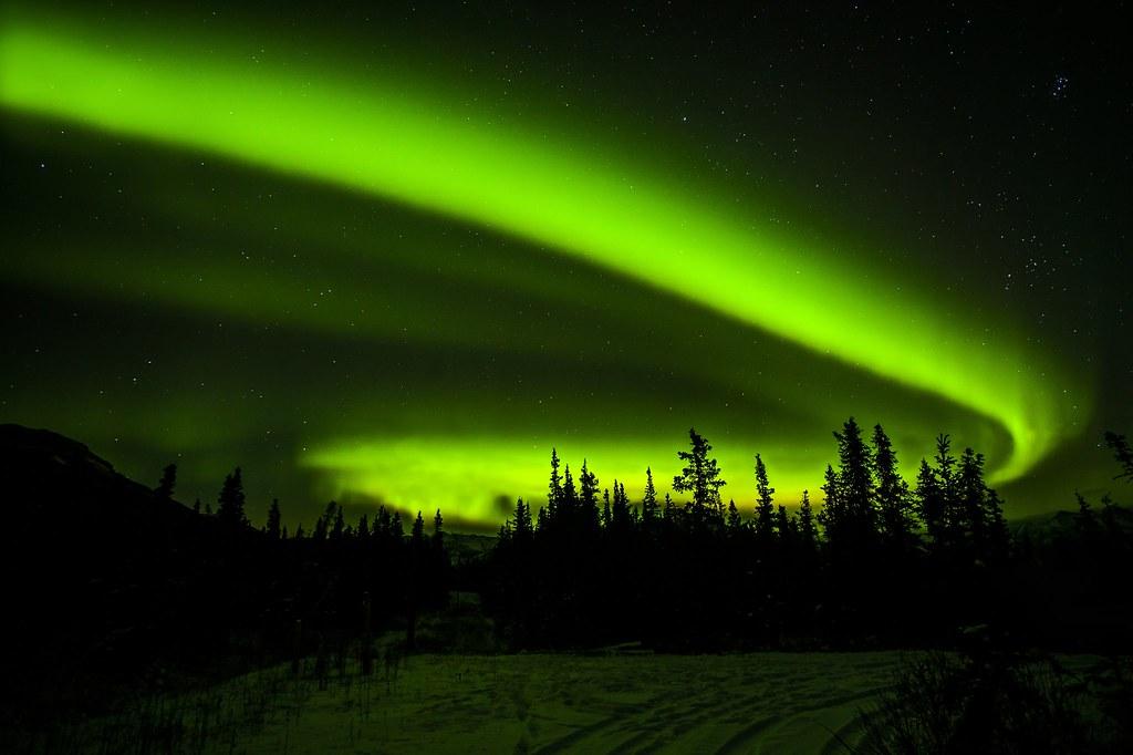 Aurora Whiplash