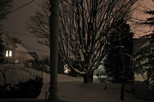 Last Night's Snowfall