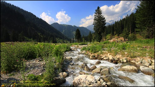 blue sky mountains tree water fauna clouds way landscape flora stream stones walk nopeople valley kalam swat swatvalley utror floralbeauty mygearandme flickrstruereflection2 utrorvalley gettyimagesmiddleeast rememberthatmomentlevel1 flickrsfinestimages1