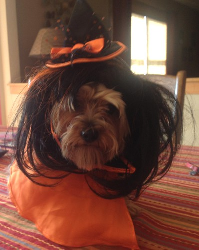 Tori - Happy Halloween!!
