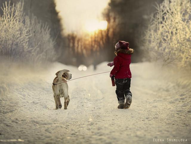 Last winter walk...