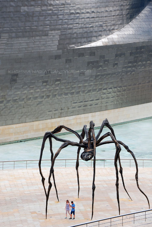 The Bilbao spider