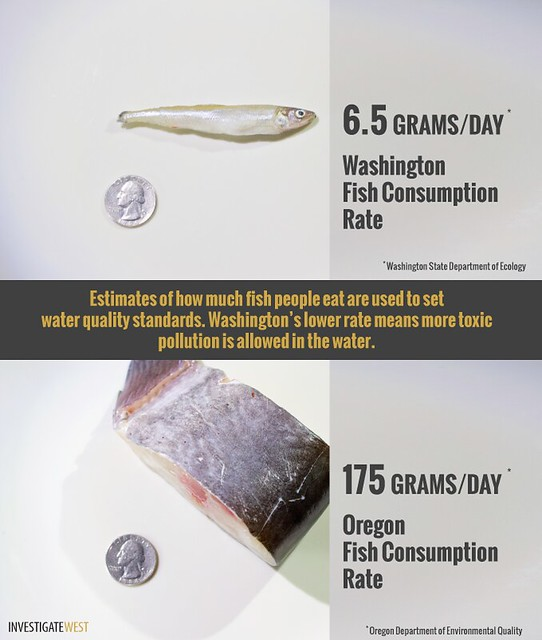 Fish Consumption Rates