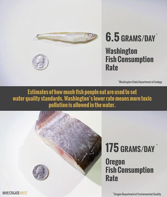 Fish Consumption Rates