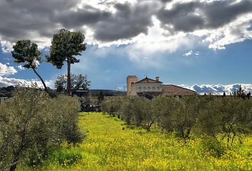 Castilla La Mancha. Caracuel de Calatrava.