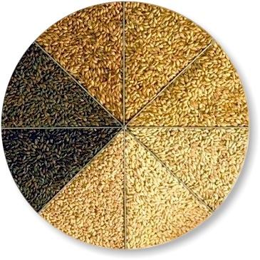 malt-circle