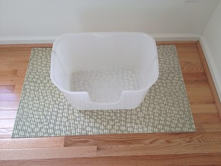 NVR Miss Litterbox product review