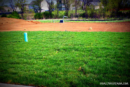 Jumpstarting the Backyard: We Got Grass!