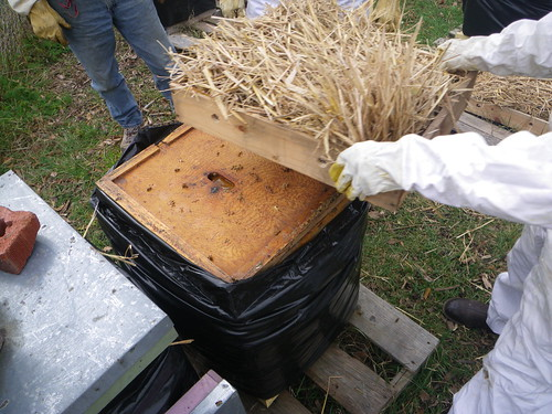 Adding a vent box to beehive