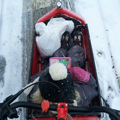 The Lulu drew the longest straw this morning. #vikingbiking #copenhagen #cyclechic #snow