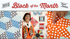 2013 block of the month with Laura Nownes