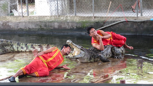 Koh Samui Crocodile Farm サムイ島 クロコダイルファーム (9)