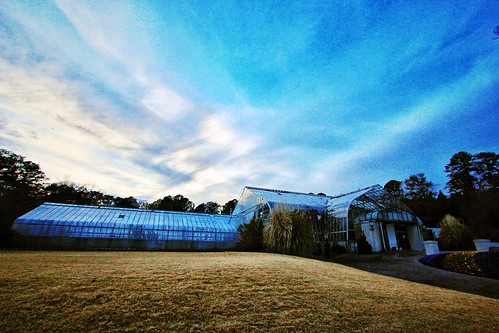 birmingham wideangle bluesky greenhouse 1022mm birminghamal 10mm birminghambotanicalgardens canon60d uploaded:by=flickrmobile flickriosapp:filter=nofilter