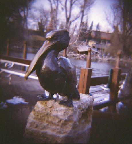 Budapest Zoo (2)