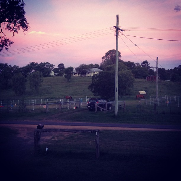 The sky went purple for a heartbeat. #lockyervalley #sunset