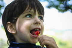 child, nose, tongue, face, hairstyle, tooth, skin, head, close-up, mouth, person, eating, boy, toddler, smile, eye, organ,