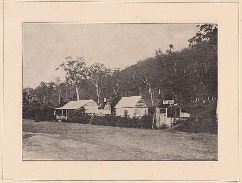 Butcher's shop, Dalmorton