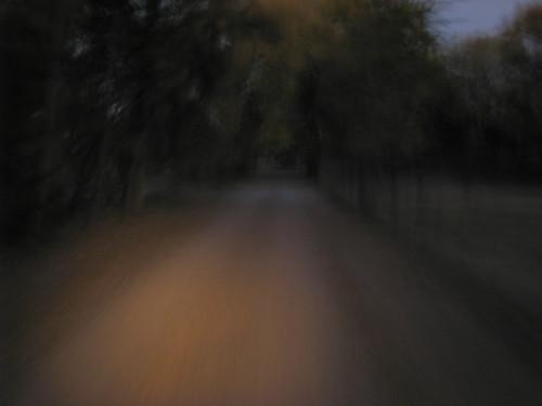 A Lane in Los Ranchos de Albuquerque at Dusk by rraabfaber