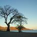 Playa de Guanacaste by ★ Angeles Antolin ★