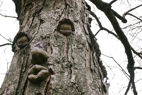 weird_trees22