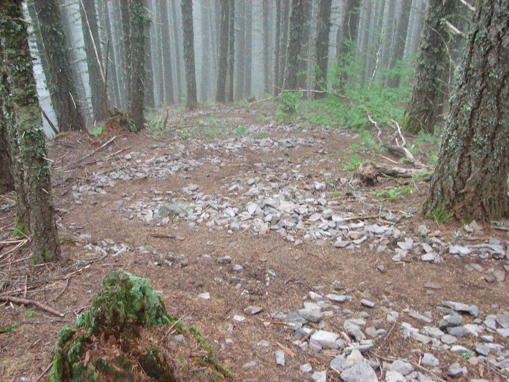 Mt. Defiance Trail