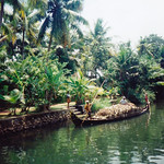 kerala_backwater_coconut_boat