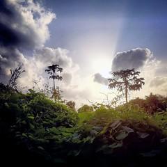 [Free Images] Nature, Sky, Clouds, Grassland / Grass, Landscape - Australia ID:201303230600