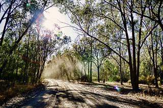 Gravel road through the Aussie bush....