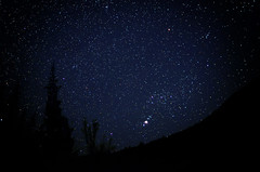 Gorgeous starry sky on the John Day river